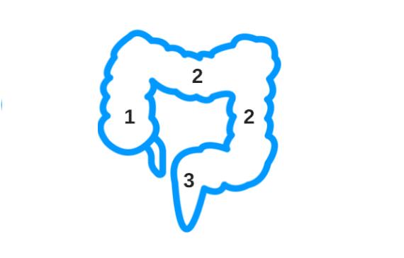 PiLeJe | Constipation, les clés pour une bonne compréhension